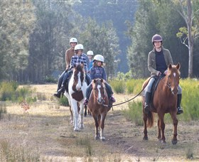 Horse Riding at Oaks Ranch and Country Club - Accommodation Noosa