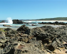 Coastal Walks - Bermagui - Accommodation Noosa