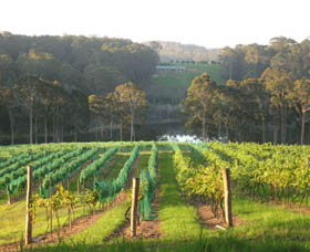Tilba Valley Wines - Accommodation Noosa