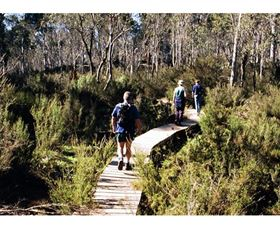 Hume and Hovell Walking Track - Henry Angel Trackhead - Accommodation Noosa