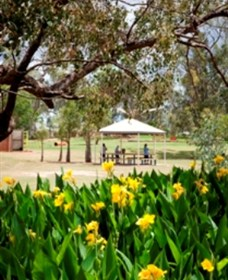 Charleville - Graham Andrews Parklands - Accommodation Noosa