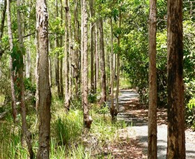 Hallorans Hill Conservation Park - Accommodation Noosa