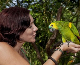 Birdworld Kuranda - Accommodation Noosa