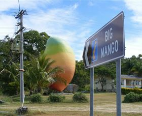 Big Mango - Accommodation Noosa