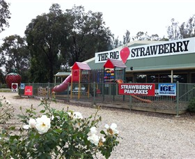 The Big Strawberry - Accommodation Noosa