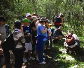Warrumbungle National Park Discovery Program - Accommodation Noosa