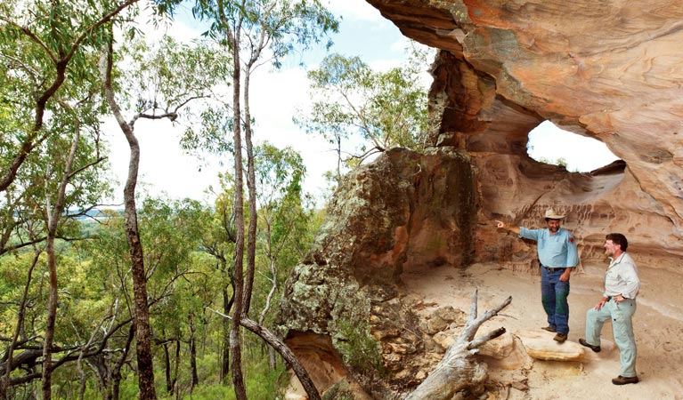 Pilliga National Park - Accommodation Noosa
