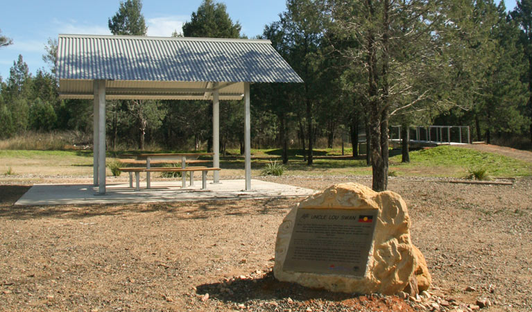 Terry Hie Hie picnic area - Accommodation Noosa