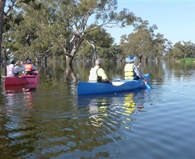 Doodle Cooma Swamp - Accommodation Noosa