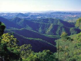 Kroombit Tops National Park - Accommodation Noosa