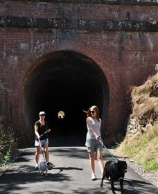 Cheviot Tunnel - Accommodation Noosa