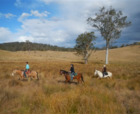 Chapman Valley Horse Riding - Accommodation Noosa