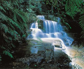 Leura Cascades - Accommodation Noosa