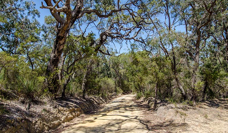 Howes trail - Accommodation Noosa