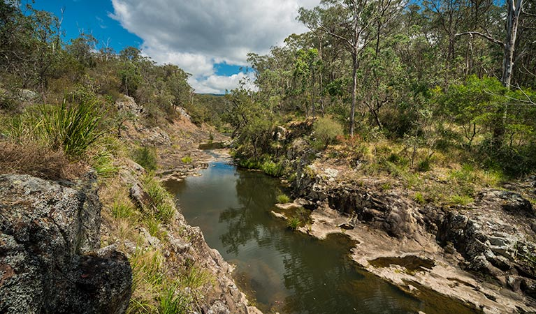 Koreelah National Park - Accommodation Noosa