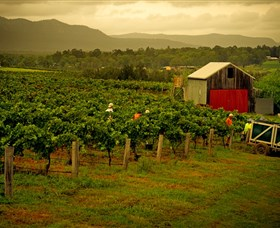 Around Hermitage Wine and Food Trail Hunter Valley - Accommodation Noosa