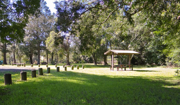 Moore Park picnic area - Accommodation Noosa