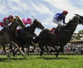 Moruya Racecourse - Accommodation Noosa