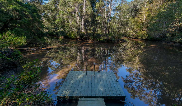 Brimbin Nature Reserve - Accommodation Noosa