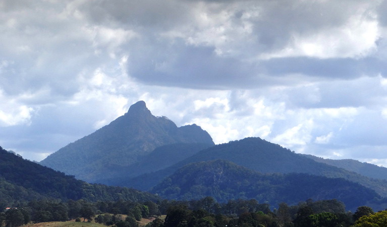 Wollumbin National Park - Accommodation Noosa