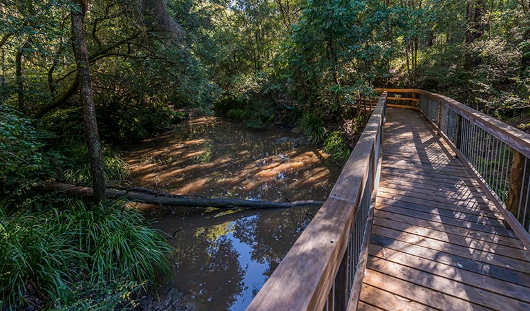 Ms Kellys walking track - Accommodation Noosa