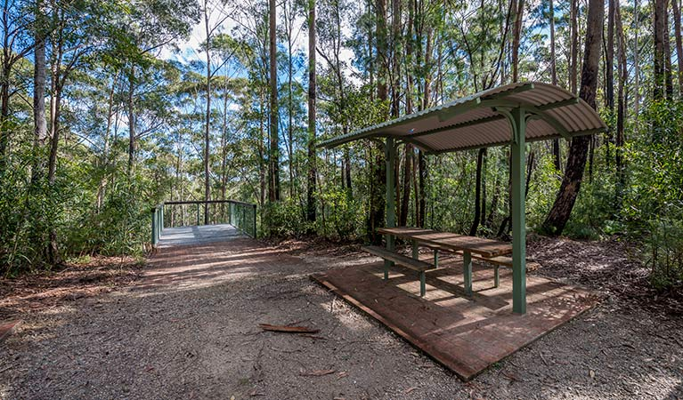 Big Nellie lookout and picnic area - Accommodation Noosa