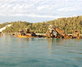 Tangalooma Wrecks Dive Site - Accommodation Noosa
