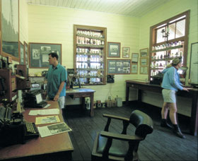 Hamelin Pool Telegraph Station - Accommodation Noosa