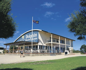 Dolphin Discovery Centre - Accommodation Noosa