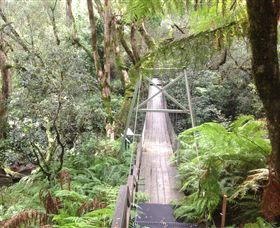 Bemm River Scenic Reserve - Accommodation Noosa