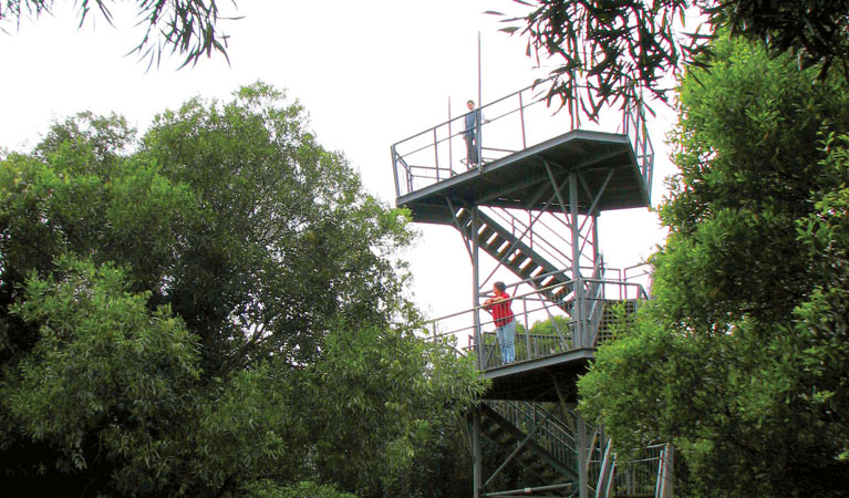Cape Hawke lookout - Accommodation Noosa
