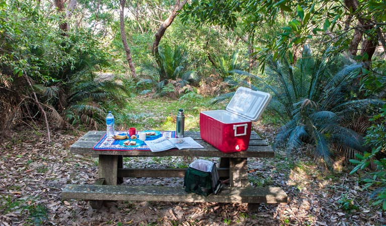 Broadwater Beach picnic area - Accommodation Noosa