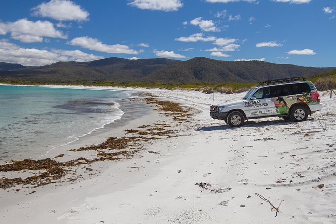 4X4 and Lunch Half Day Bicheno Coastal Mountain - Accommodation Noosa