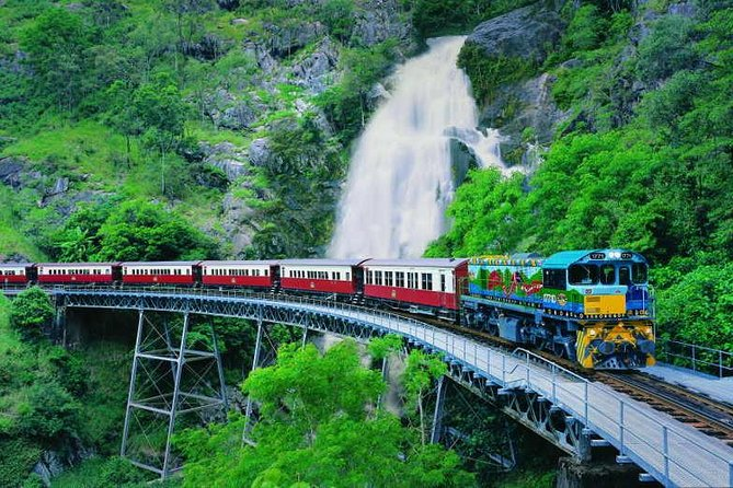 Full-Day Tour with Kuranda Scenic Railway Skyrail Rainforest Cableway and Hartley's Crocodile Adventures from Cairns - Accommodation Noosa