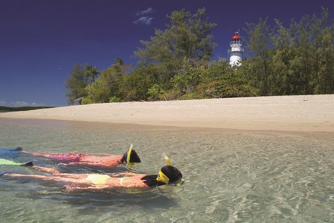 Wavedancer Low Isles Great Barrier Reef Sailing Cruise from Palm Cove - Accommodation Noosa