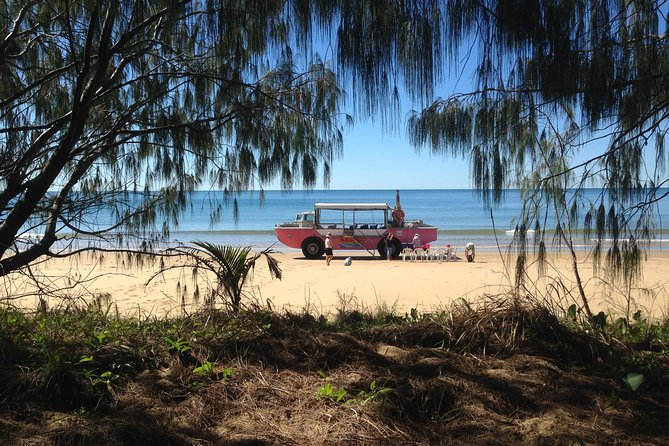 Coastline Tour by LARC Amphibious Vehicle Including Picnic Lunch