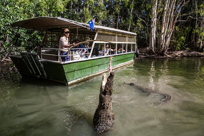 Hartley's Crocodile Adventures Day Trip from Palm Cove - Accommodation Noosa