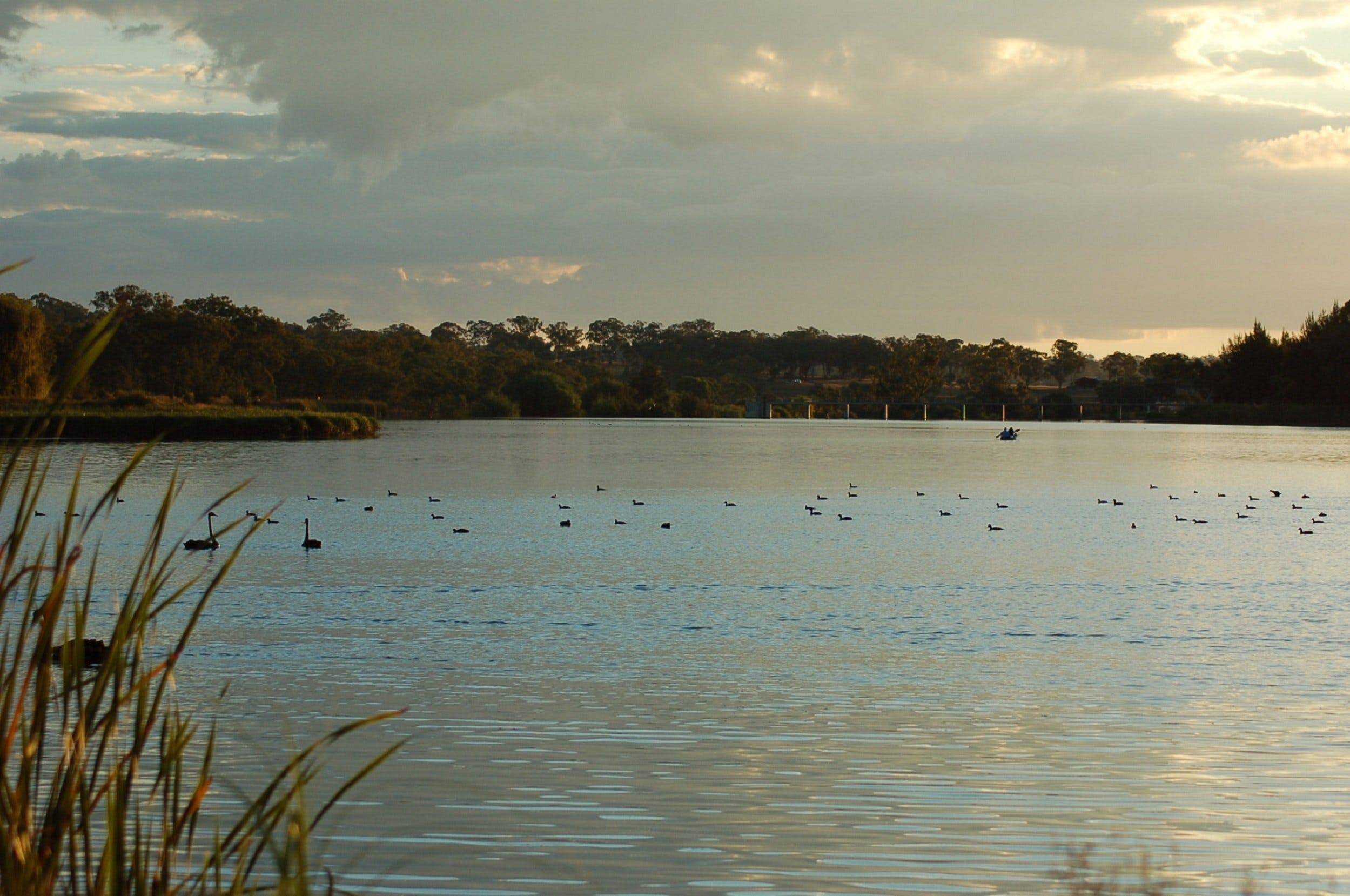 Lake Inverell Reserve - Accommodation Noosa