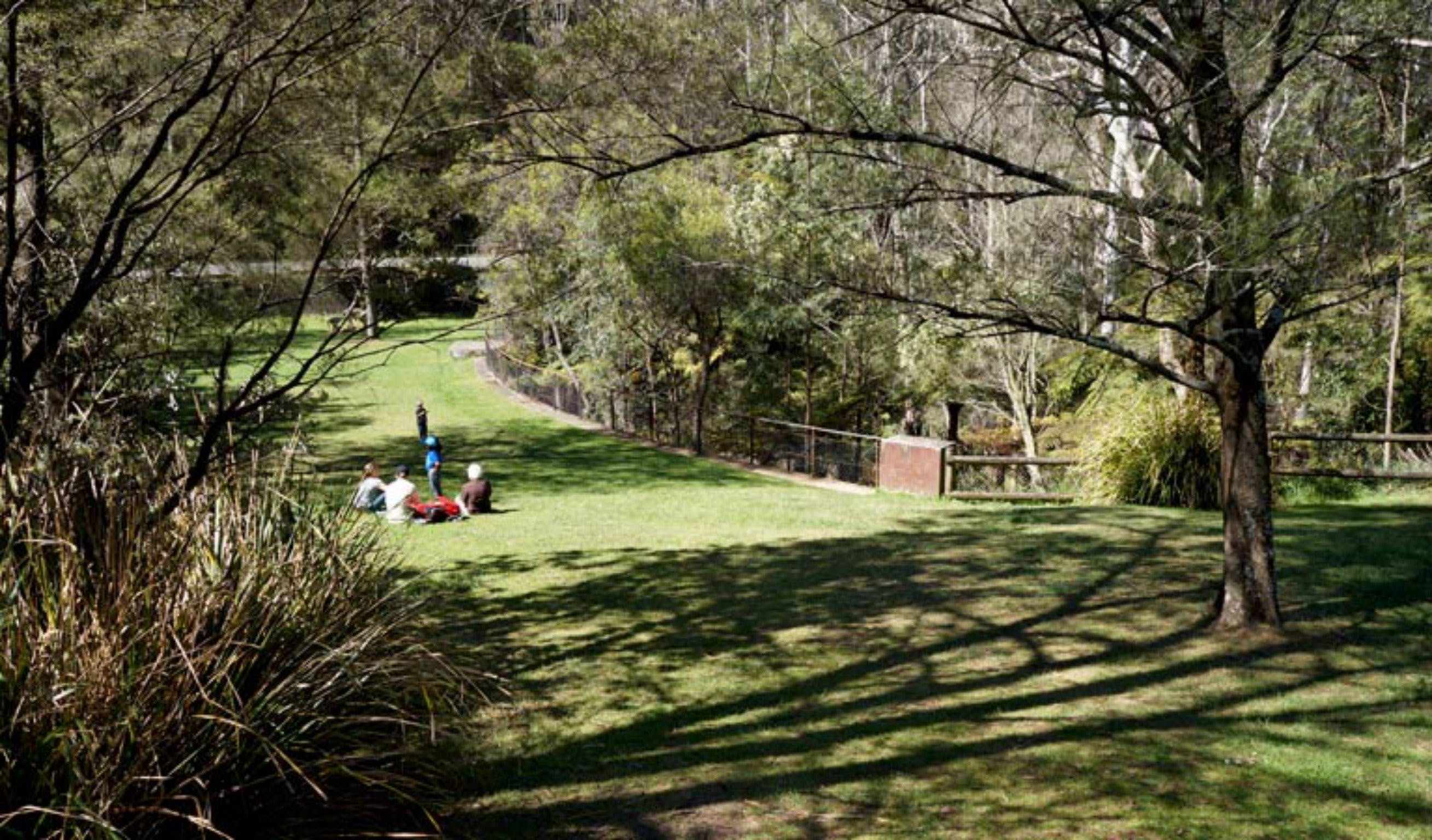 Leura Cascades picnic area - Accommodation Noosa