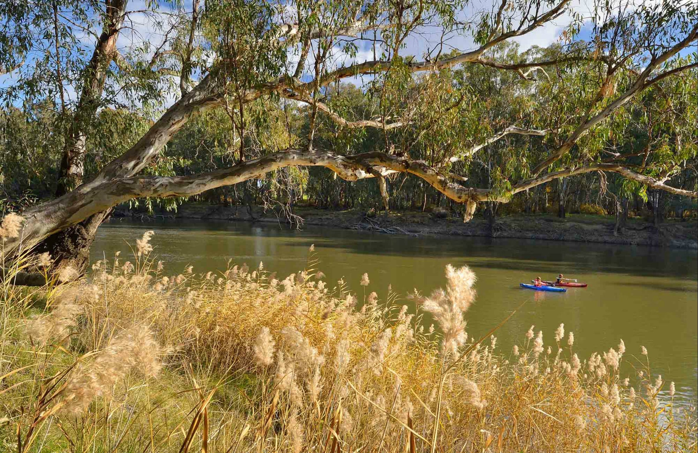 Murrumbidgee Valley National Park - Accommodation Noosa