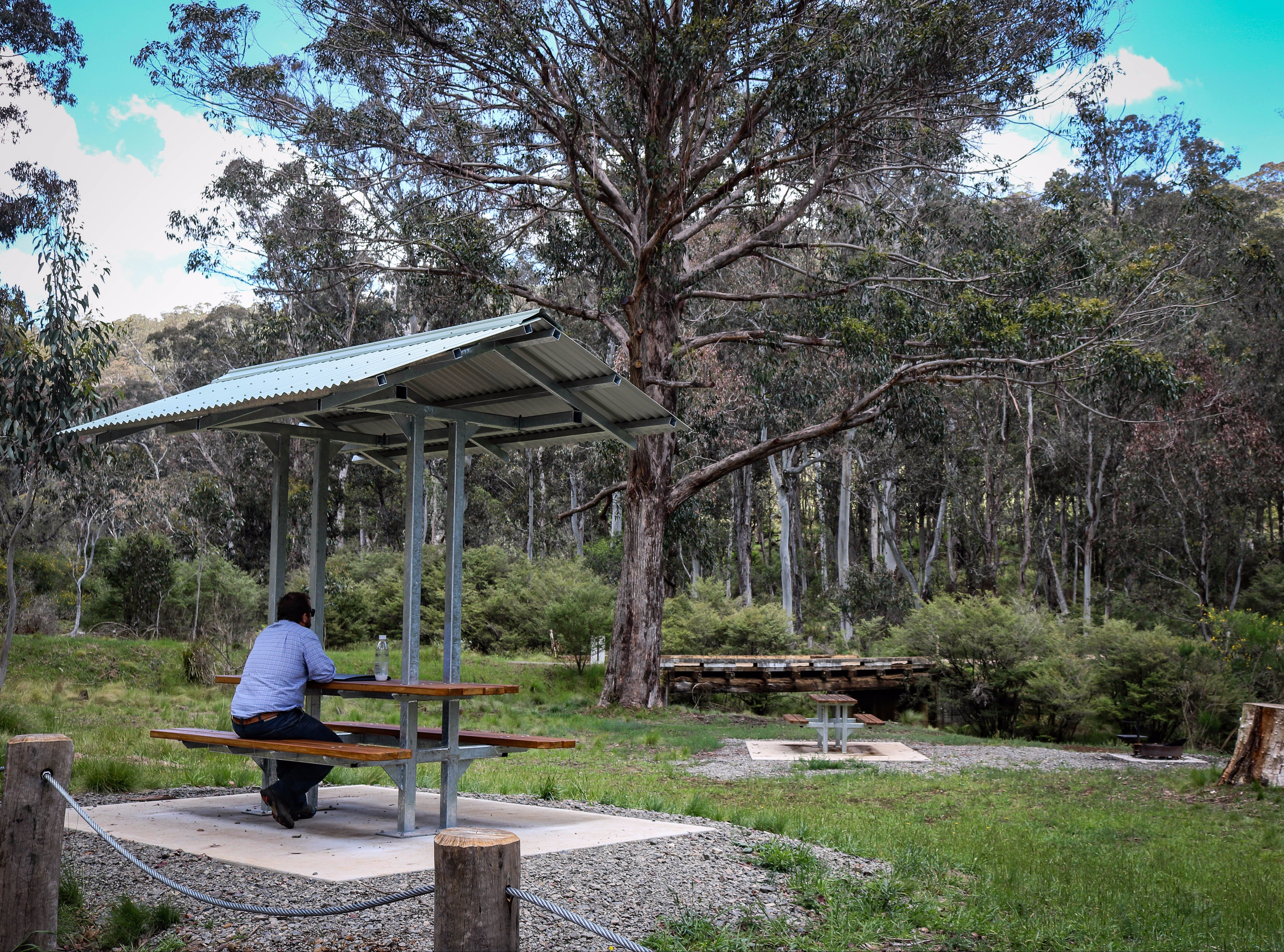 Barrington Tops State Forest - Accommodation Noosa