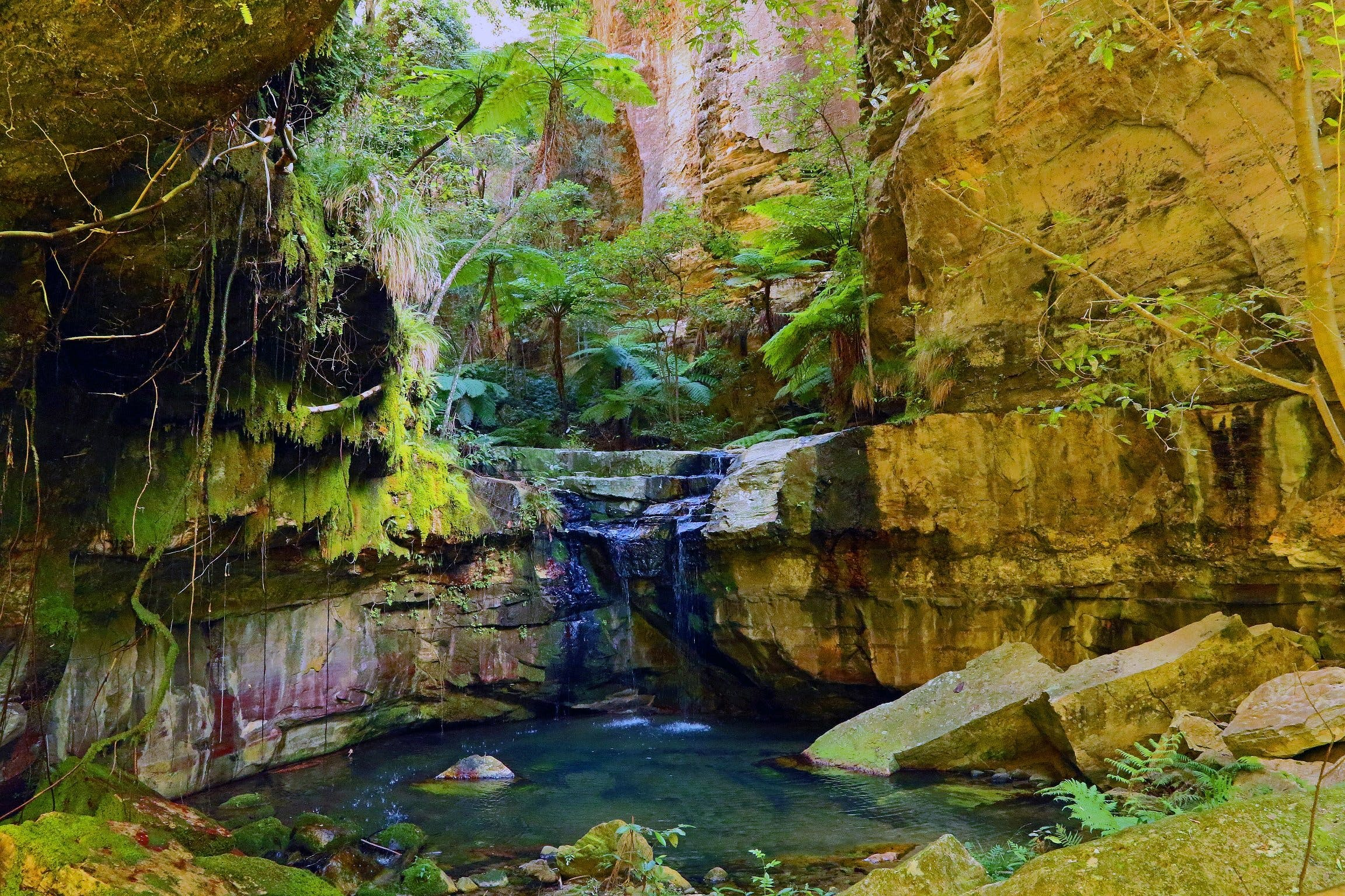 Glimpse of the Outback 5 Day Tour - Roma and Surrounds - Accommodation Noosa