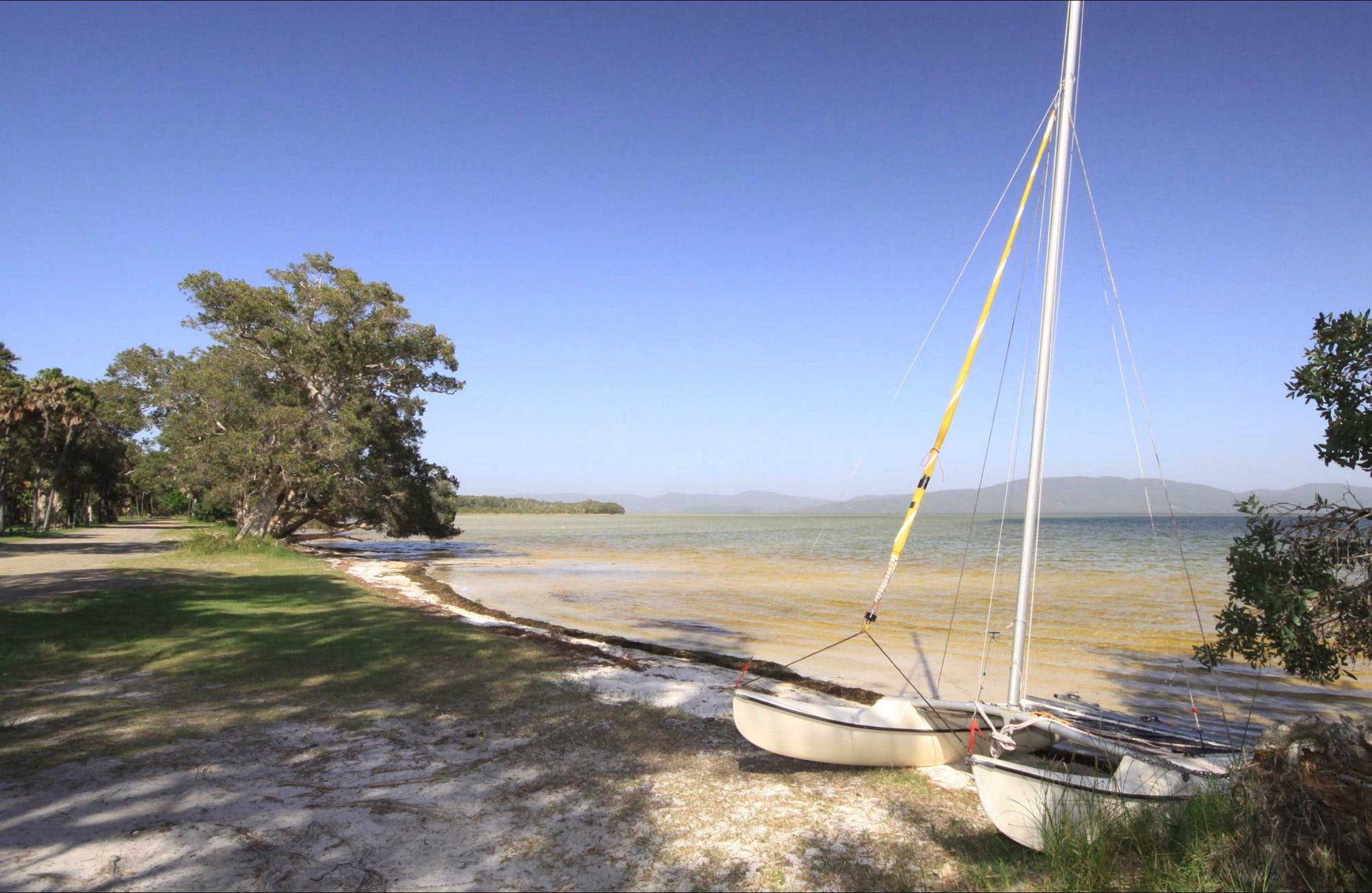 Sailing Club picnic area - Accommodation Noosa
