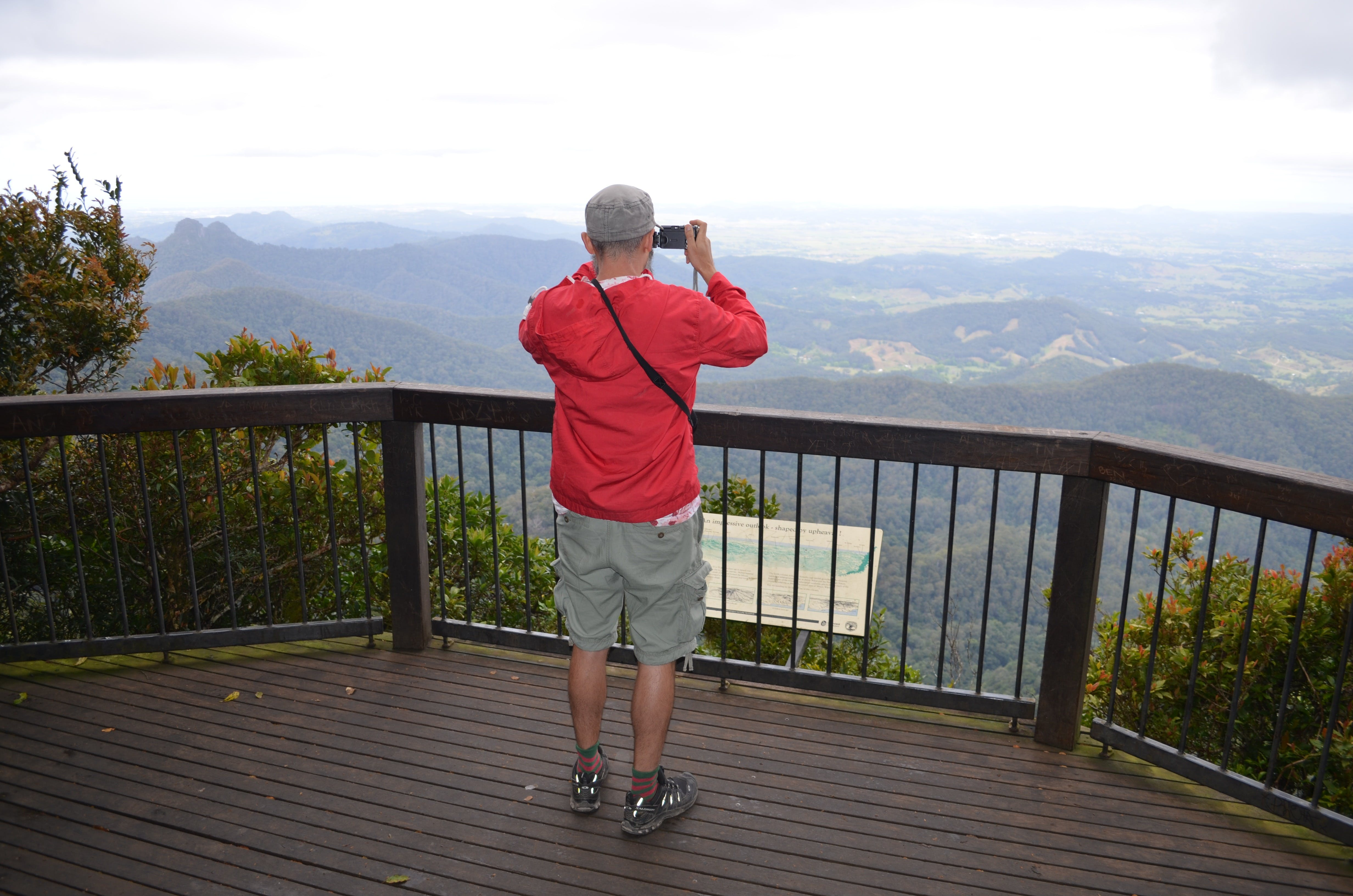 Best of All lookout track Springbrook National Park - Accommodation Noosa