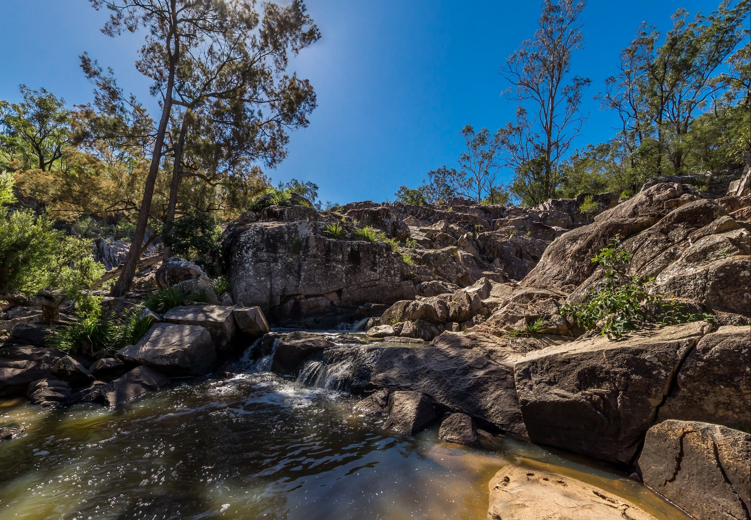 Crows Nest Falls - Accommodation Noosa