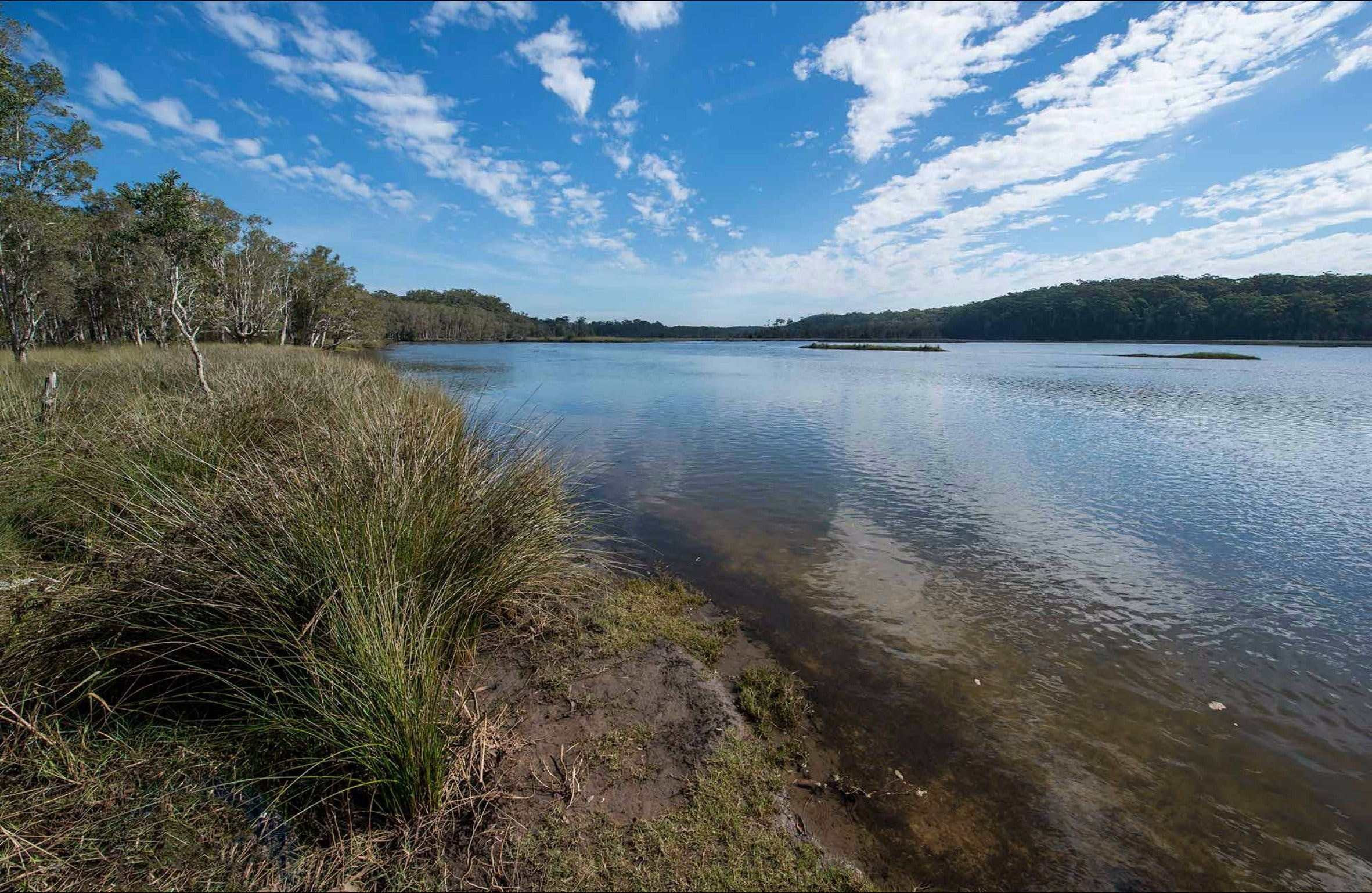 Lake Innes Nature Reserve - Accommodation Noosa