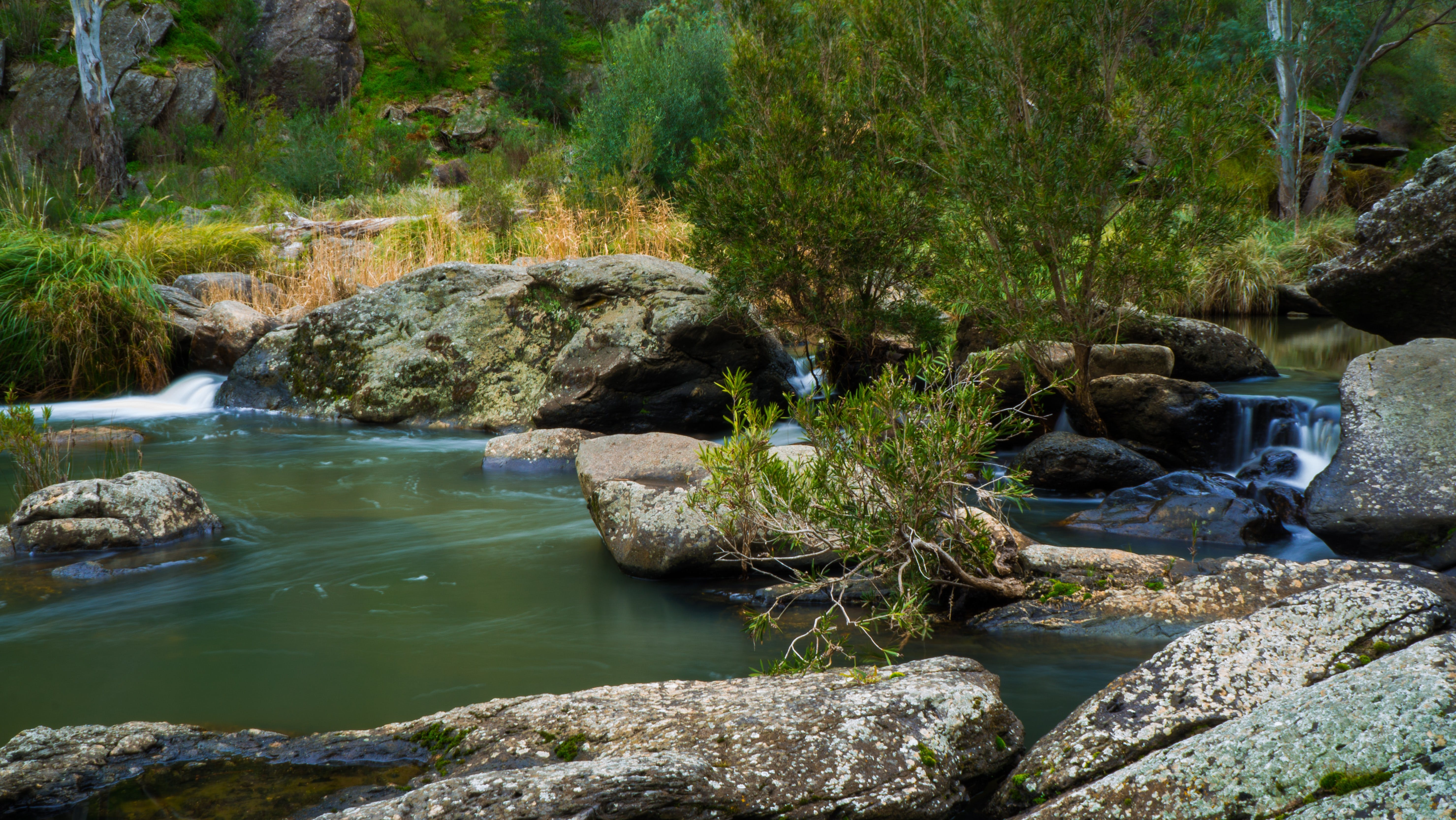Onkaparinga River National Park - Accommodation Noosa