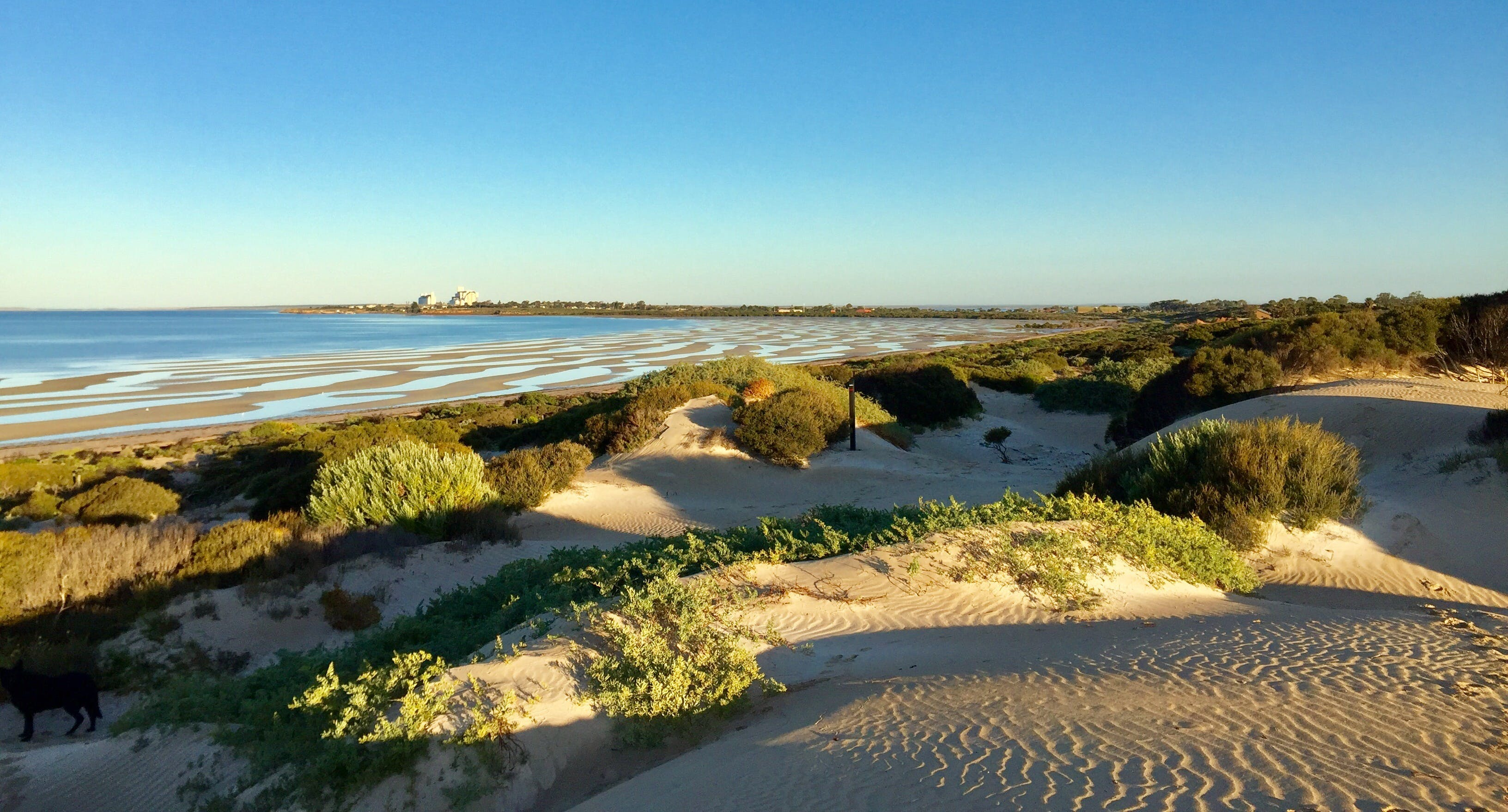 Shelly Beach Dune Walk Trail - Accommodation Noosa