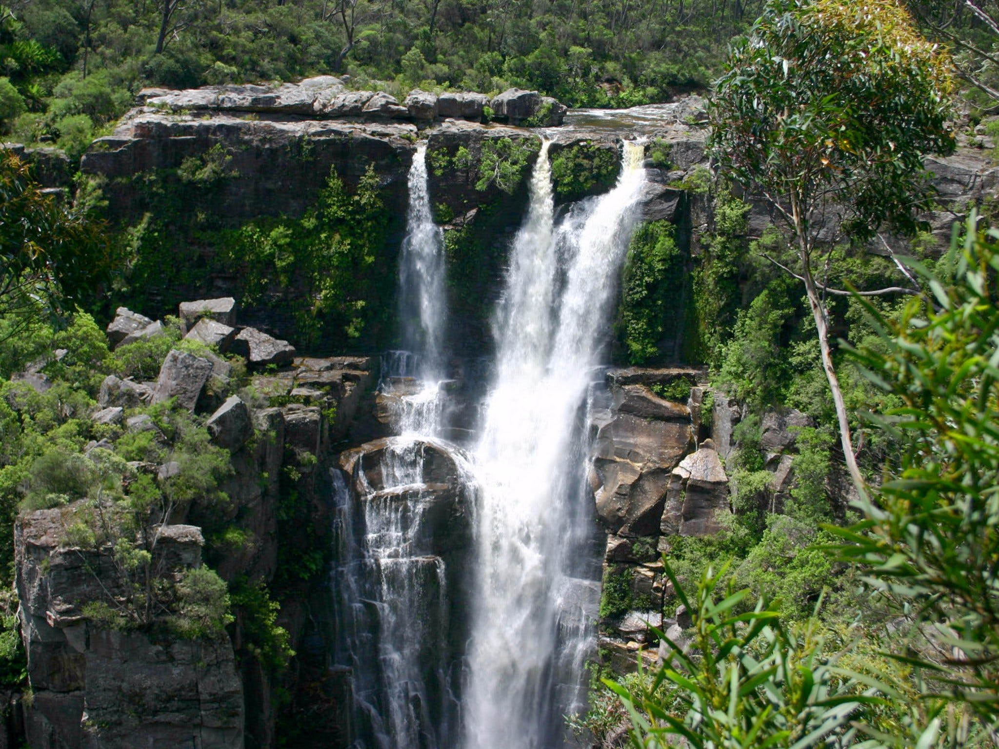 Carrington Falls - Accommodation Noosa