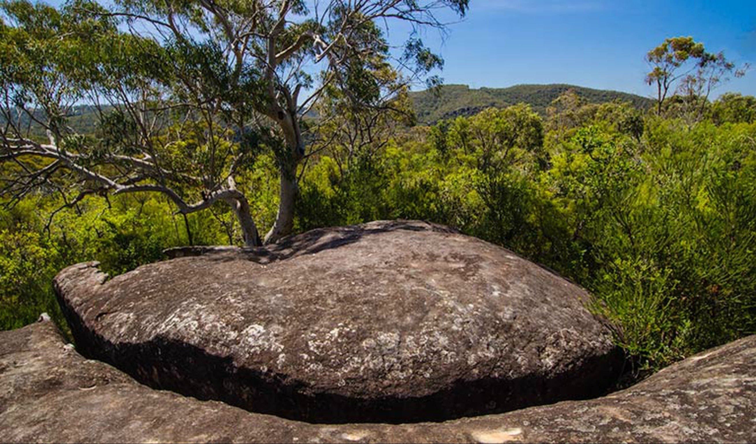 Marramarra Ridge to Smugglers Ridge walking track - Accommodation Noosa